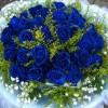 蓝色妖姬着色剂